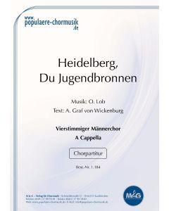 Heidelberg, du Jugendbronnen